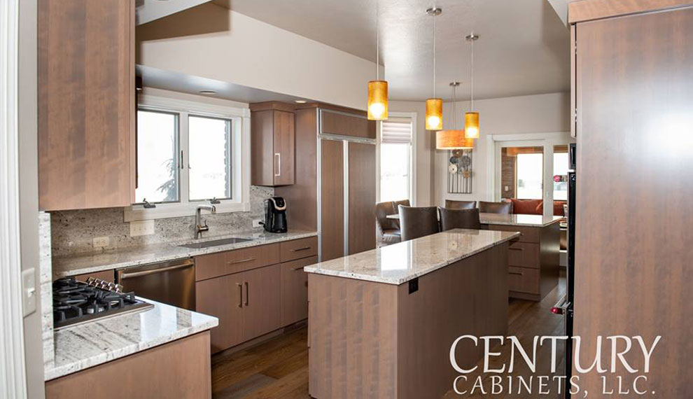 Sleek & Inspiring Contemporary | Century Cabinets in Orange City, IA